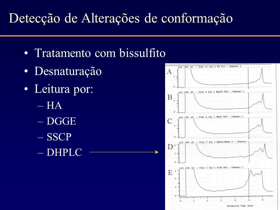 Detecção de Alterações de conformação Tratamento com bissulfito Desnaturação Leitura por: –HA –DGGE –SSCP –DHPLC