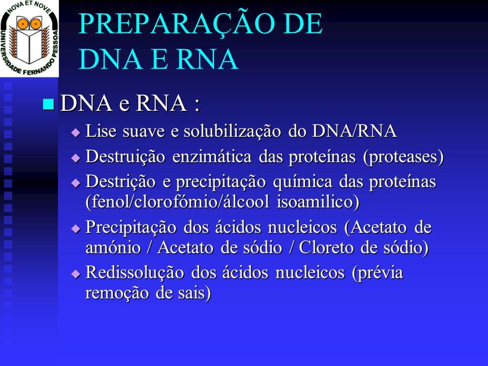 PREPARAÇÃO DE DNA E RNA DNA e RNA : DNA e RNA : Lise suave e solubilização do DNA/RNA Lise suave e solubilização do DNA/RNA Destruição enzimática das