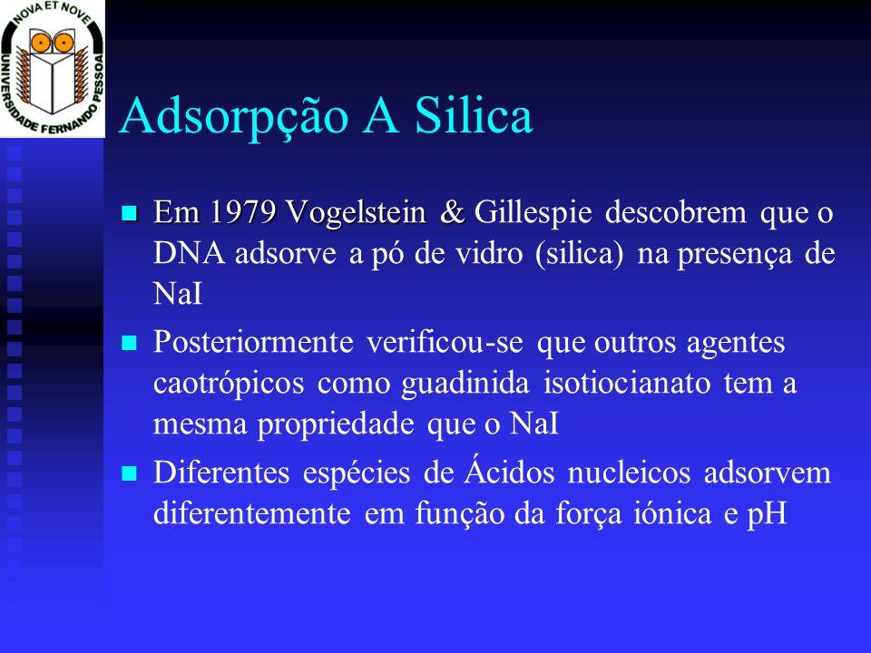 Adsorpção A Silica Em 1979 Vogelstein & Em 1979 Vogelstein & Gillespie descobrem que o DNA adsorve a pó de vidro (silica) na presença de NaI Posterior