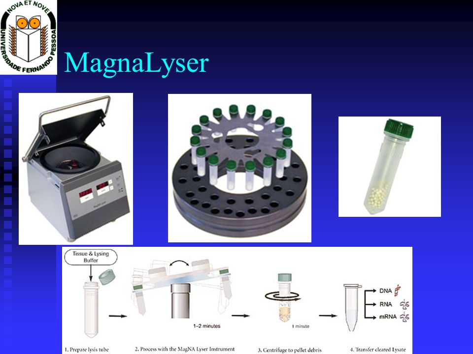 MagnaLyser