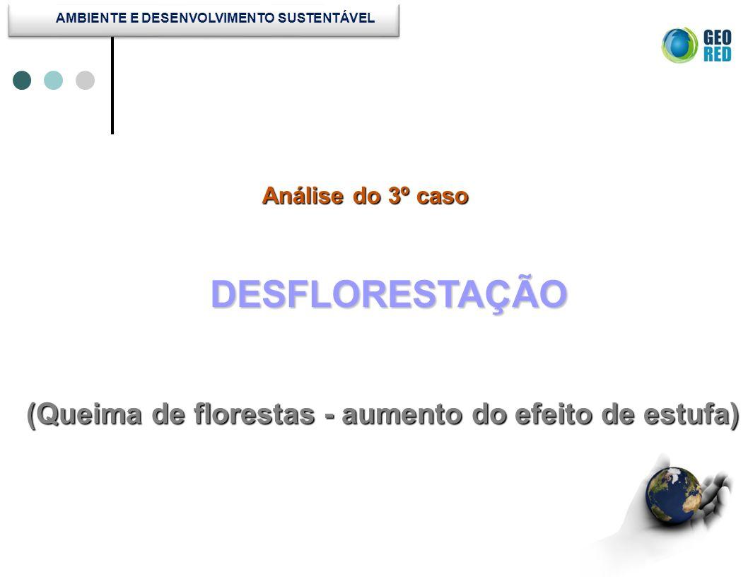 Análise do 3º caso Análise do 3º caso DESFLORESTAÇÃO (Queima de florestas - aumento do efeito de estufa)