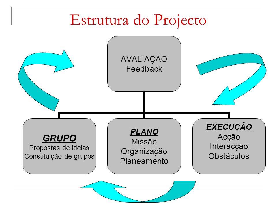 Estrutura do Projecto AVALIAÇÃO Feedback GRUPO Propostas de ideias Constituição de grupos PLANO Missão Organização Planeamento EXECUÇÃO Acção Interacção Obstáculos