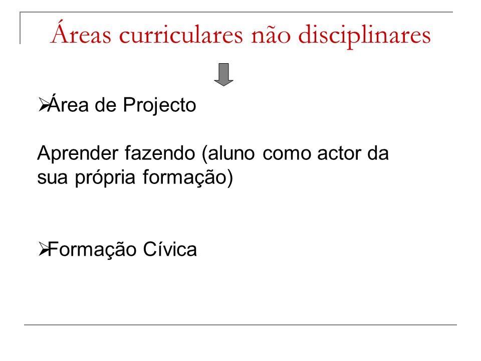 Áreas curriculares não disciplinares Área de Projecto Aprender fazendo (aluno como actor da sua própria formação) Formação Cívica