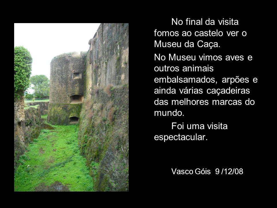 No final da visita fomos ao castelo ver o Museu da Caça. No Museu vimos aves e outros animais embalsamados, arpões e ainda várias caçadeiras das melho