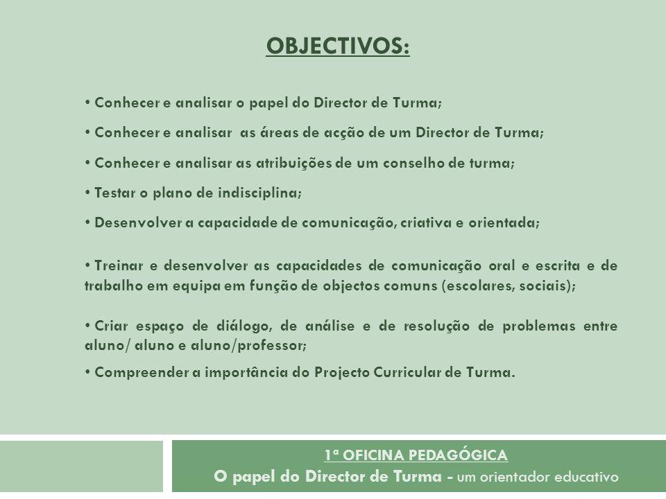 Conhecer e analisar o papel do Director de Turma; Conhecer e analisar as áreas de acção de um Director de Turma; Conhecer e analisar as atribuições de