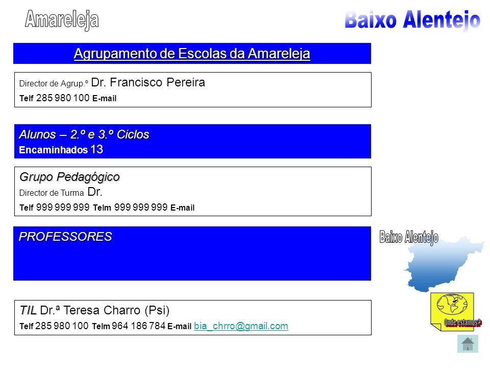 Agrupamento de Escolas da Amareleja Director de Agrup.º Dr. Francisco Pereira Telf 285 980 100 E-mail Alunos – 2.º e 3.º Ciclos Encaminhados 13 Grupo
