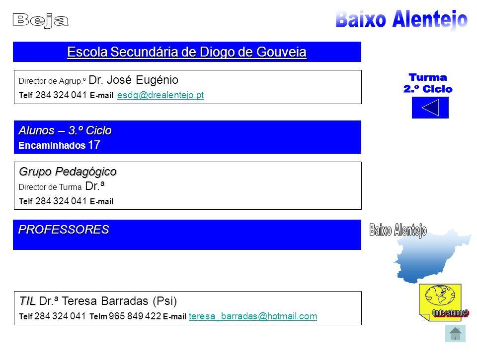 Escola Secundária de Diogo de Gouveia Director de Agrup.º Dr. José Eugénio Telf 284 324 041 E-mail esdg@drealentejo.pt esdg@drealentejo.pt Alunos – 3.