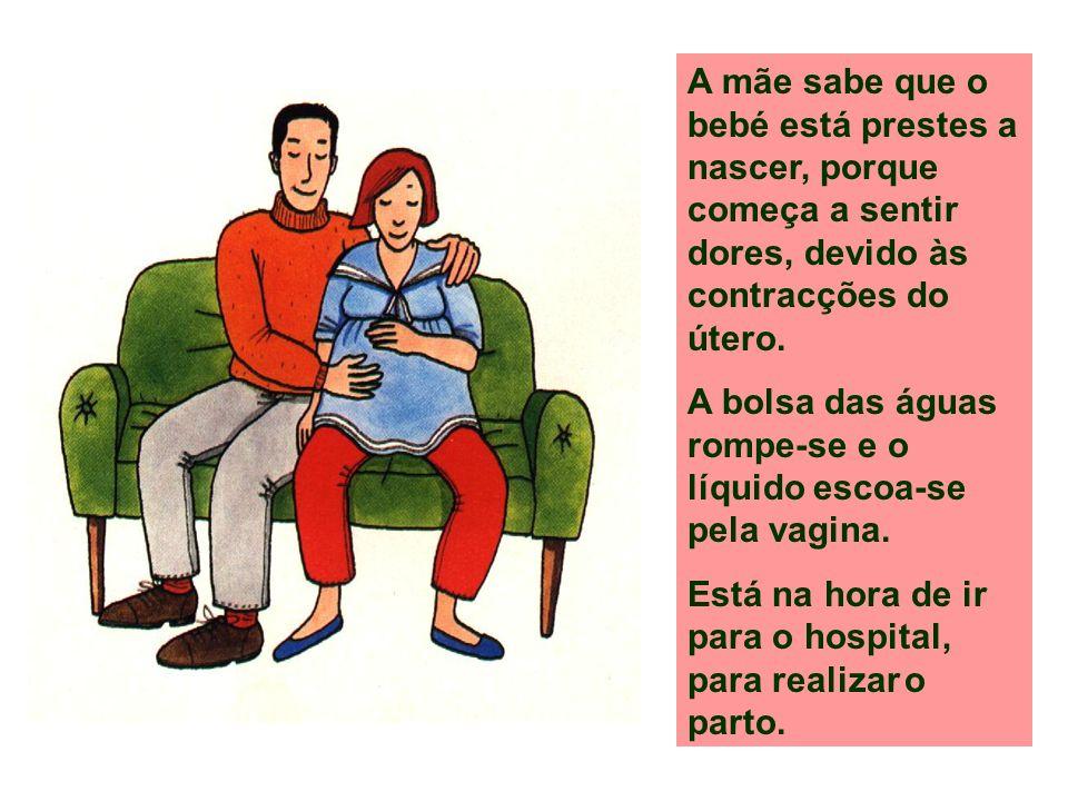 A mãe sabe que o bebé está prestes a nascer, porque começa a sentir dores, devido às contracções do útero. A bolsa das águas rompe-se e o líquido esco