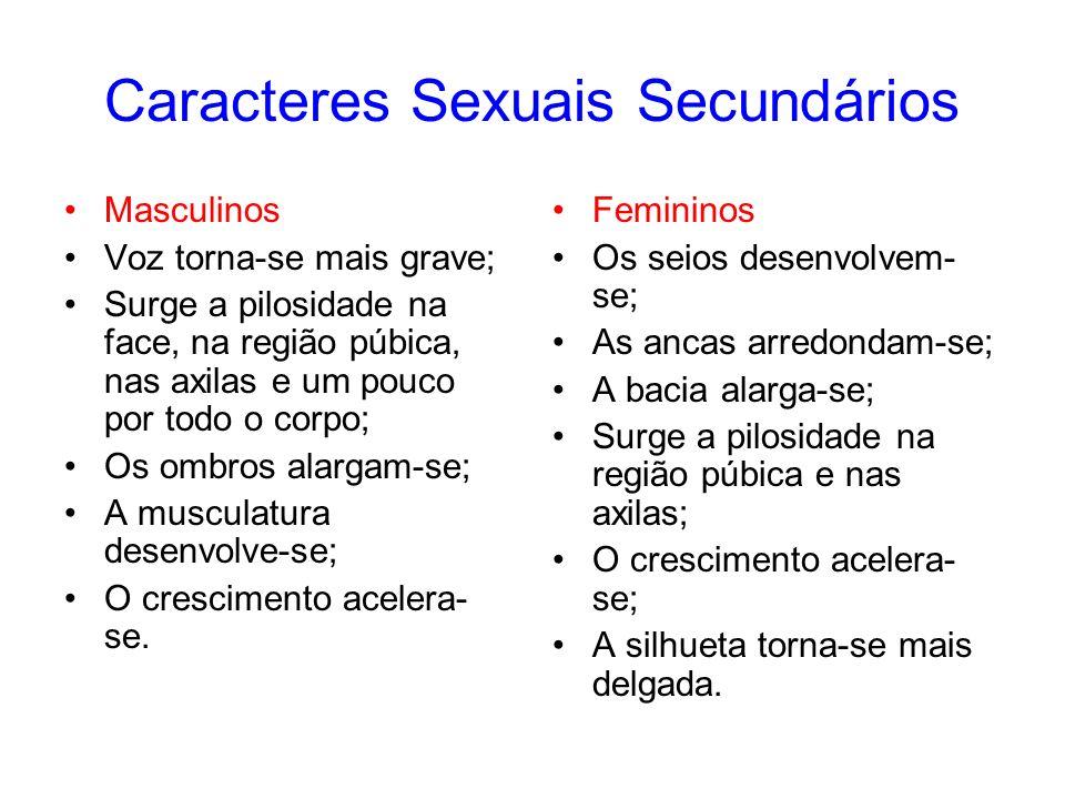 Caracteres Sexuais Secundários Masculinos Voz torna-se mais grave; Surge a pilosidade na face, na região púbica, nas axilas e um pouco por todo o corp