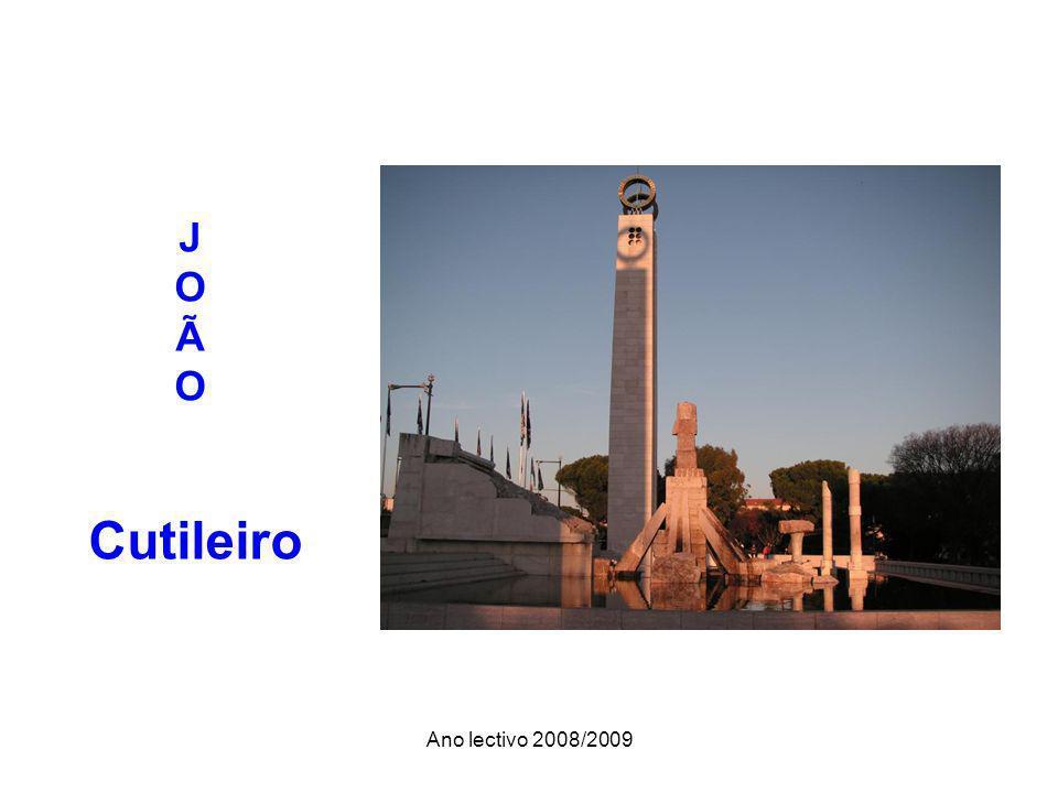 Ano lectivo 2008/2009 J O Ã O Cutileiro