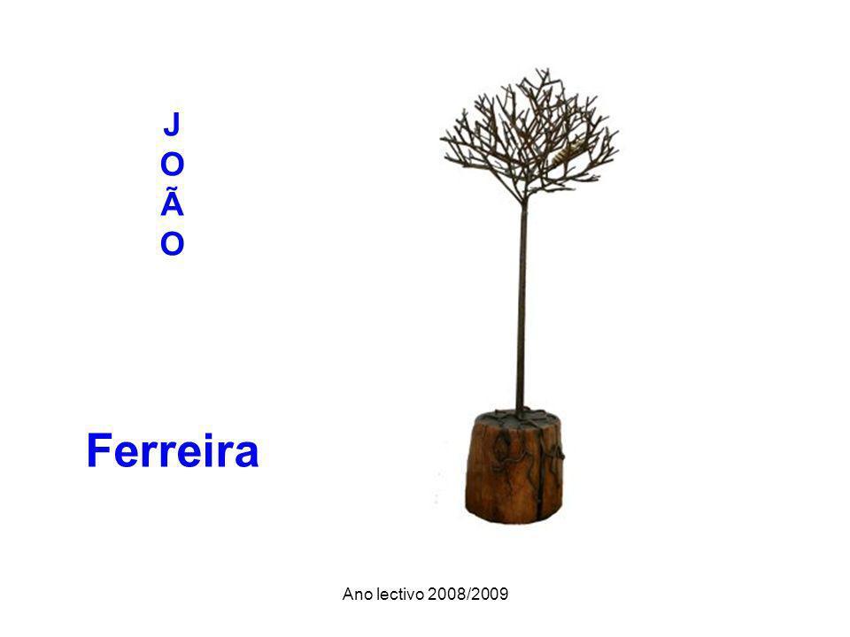 Ano lectivo 2008/2009 J O Ã O Ferreira