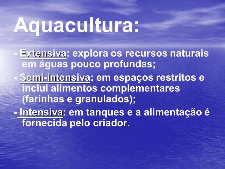 Extensiva - Extensiva: explora os recursos naturais em águas pouco profundas; Semi-intensiva - Semi-intensiva: em espaços restritos e inclui alimentos