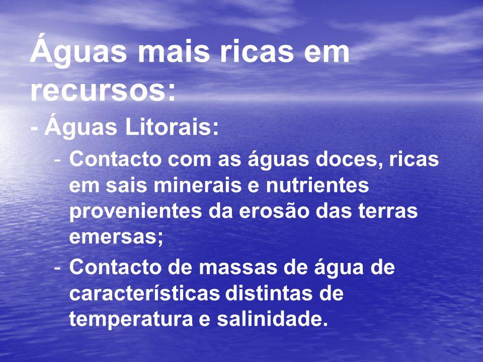 Águas mais ricas em recursos: - Águas Litorais: --C--Contacto com as águas doces, ricas em sais minerais e nutrientes provenientes da erosão das terra