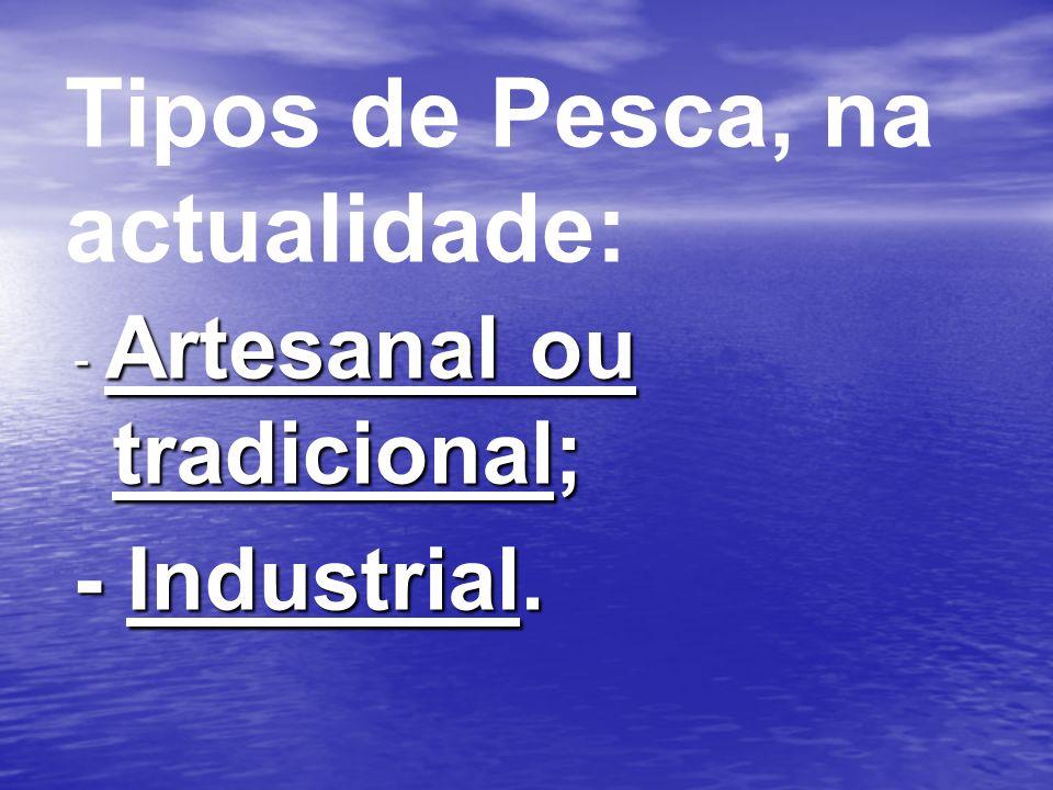 Tipos de Pesca, na actualidade: - Artesanal ou tradicional; - Industrial.