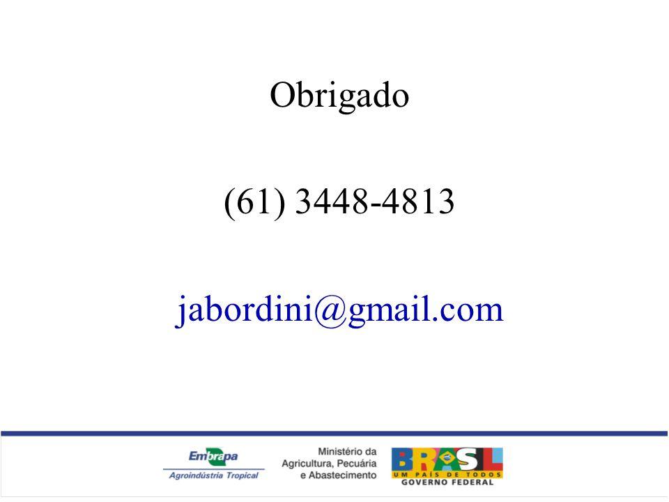 Obrigado (61) 3448-4813 jabordini@gmail.com