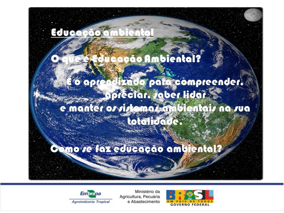 Educação ambiental O que é Educação Ambiental? É o aprendizado para compreender, apreciar, saber lidar e manter os sistemas ambientais na sua totalida