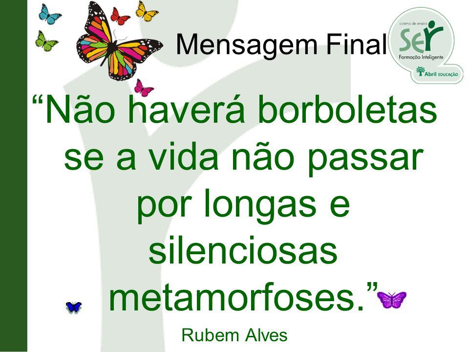 Mensagem Final Não haverá borboletas se a vida não passar por longas e silenciosas metamorfoses. Rubem Alves