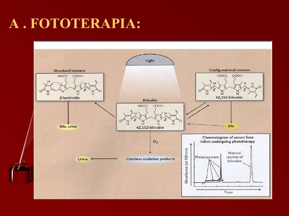 A. FOTOTERAPIA: