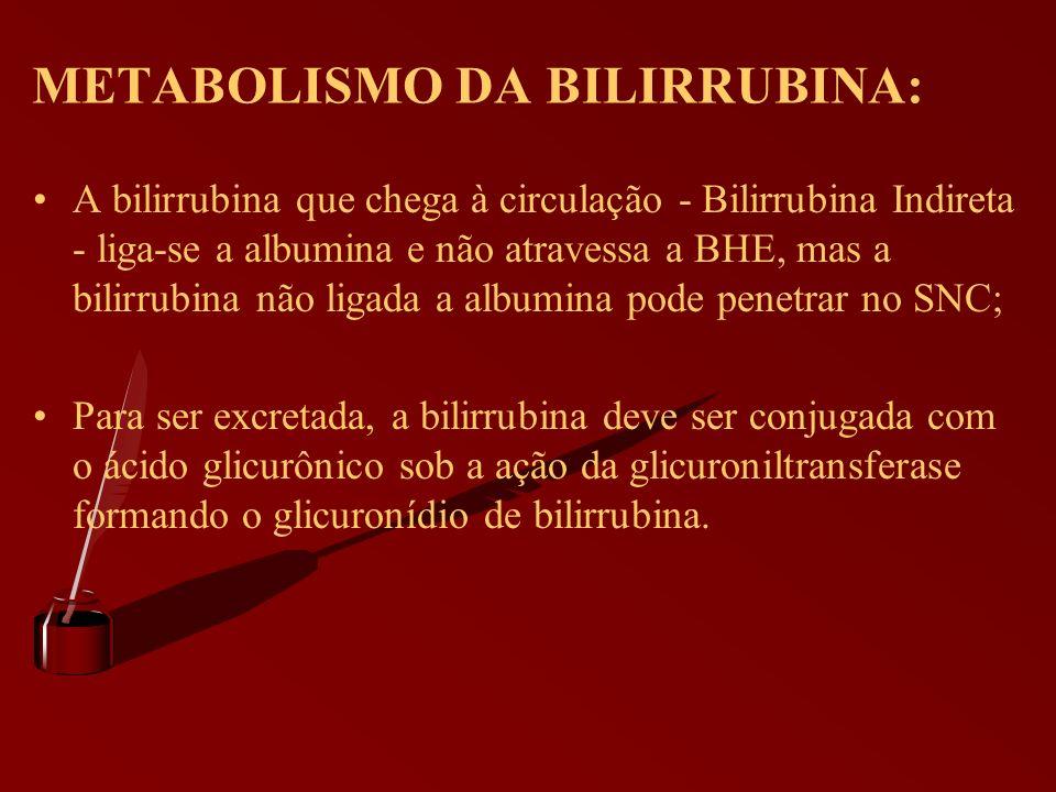 A bilirrubina que chega à circulação - Bilirrubina Indireta - liga-se a albumina e não atravessa a BHE, mas a bilirrubina não ligada a albumina pode p