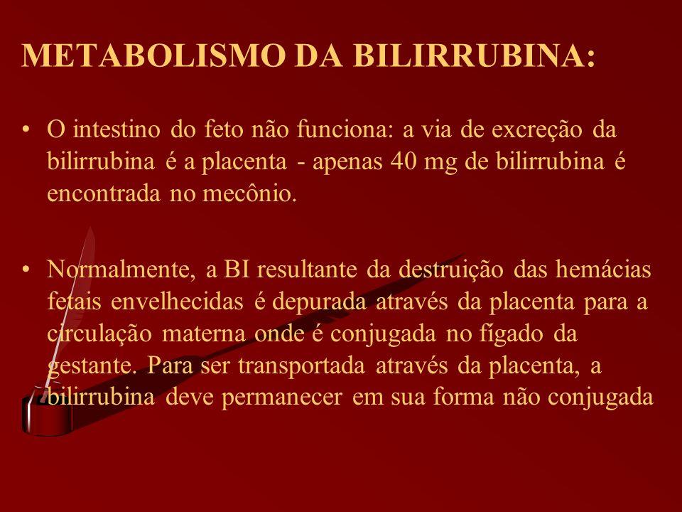METABOLISMO DA BILIRRUBINA: O intestino do feto não funciona: a via de excreção da bilirrubina é a placenta - apenas 40 mg de bilirrubina é encontrada