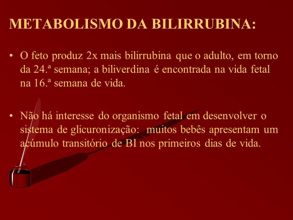 METABOLISMO DA BILIRRUBINA: O feto produz 2x mais bilirrubina que o adulto, em torno da 24.ª semana; a biliverdina é encontrada na vida fetal na 16.ª