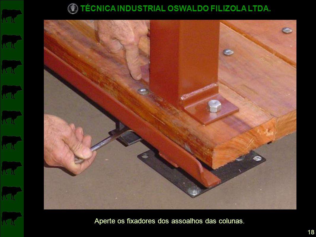 TÉCNICA INDUSTRIAL OSWALDO FILIZOLA LTDA. 18 Aperte os fixadores dos assoalhos das colunas.
