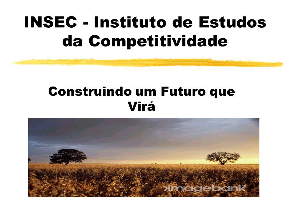 INSEC - Instituto de Estudos da Competitividade Construindo um Futuro que Virá