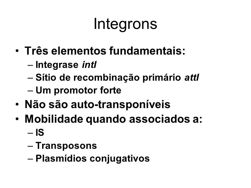 Integrons Três elementos fundamentais: –Integrase intI –Sítio de recombinação primário attI –Um promotor forte Não são auto-transponíveis Mobilidade q