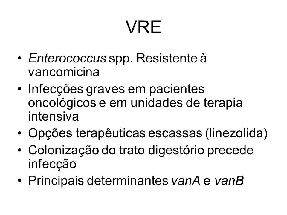 VRE Enterococcus spp. Resistente à vancomicina Infecções graves em pacientes oncológicos e em unidades de terapia intensiva Opções terapêuticas escass