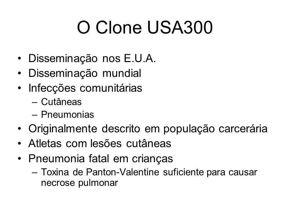 O Clone USA300 Disseminação nos E.U.A. Disseminação mundial Infecções comunitárias –Cutâneas –Pneumonias Originalmente descrito em população carcerári