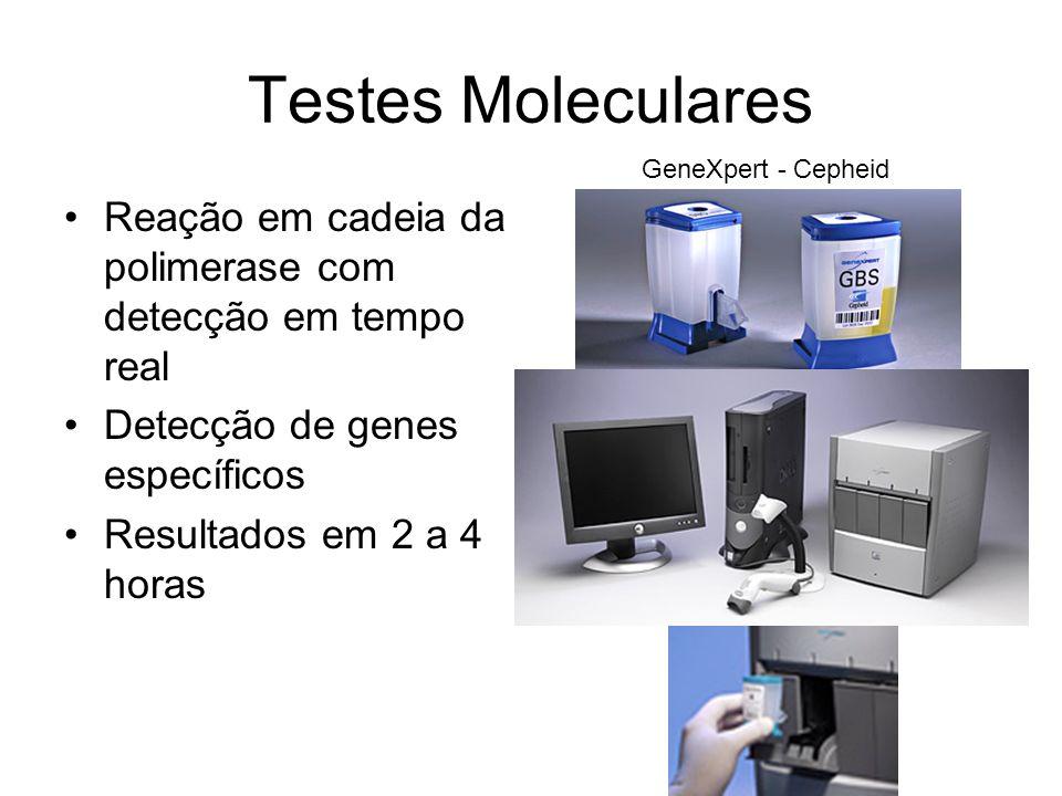 Testes Moleculares Reação em cadeia da polimerase com detecção em tempo real Detecção de genes específicos Resultados em 2 a 4 horas GeneXpert - Cephe