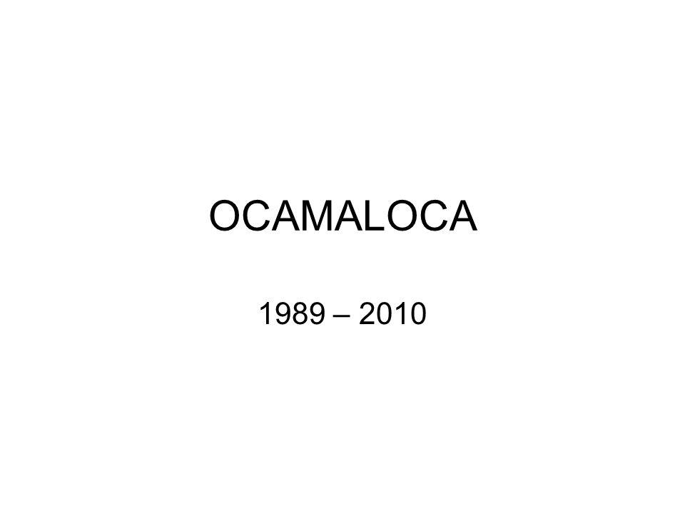 A Ocamaloca, 1989: Instalação com a participação de 46 artistas brasileiros.