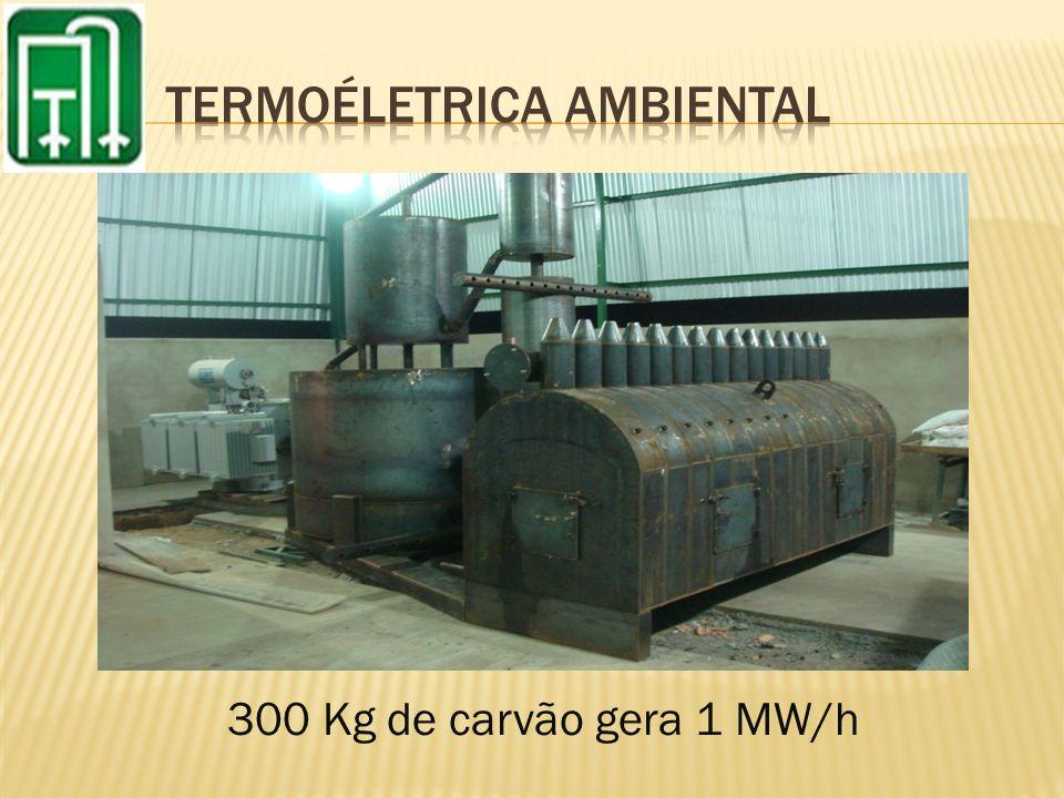 300 Kg de carvão gera 1 MW/h