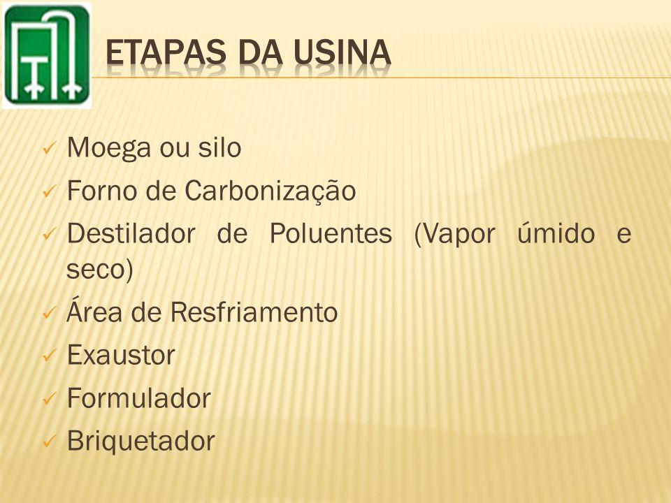 Moega ou silo Forno de Carbonização Destilador de Poluentes (Vapor úmido e seco) Área de Resfriamento Exaustor Formulador Briquetador