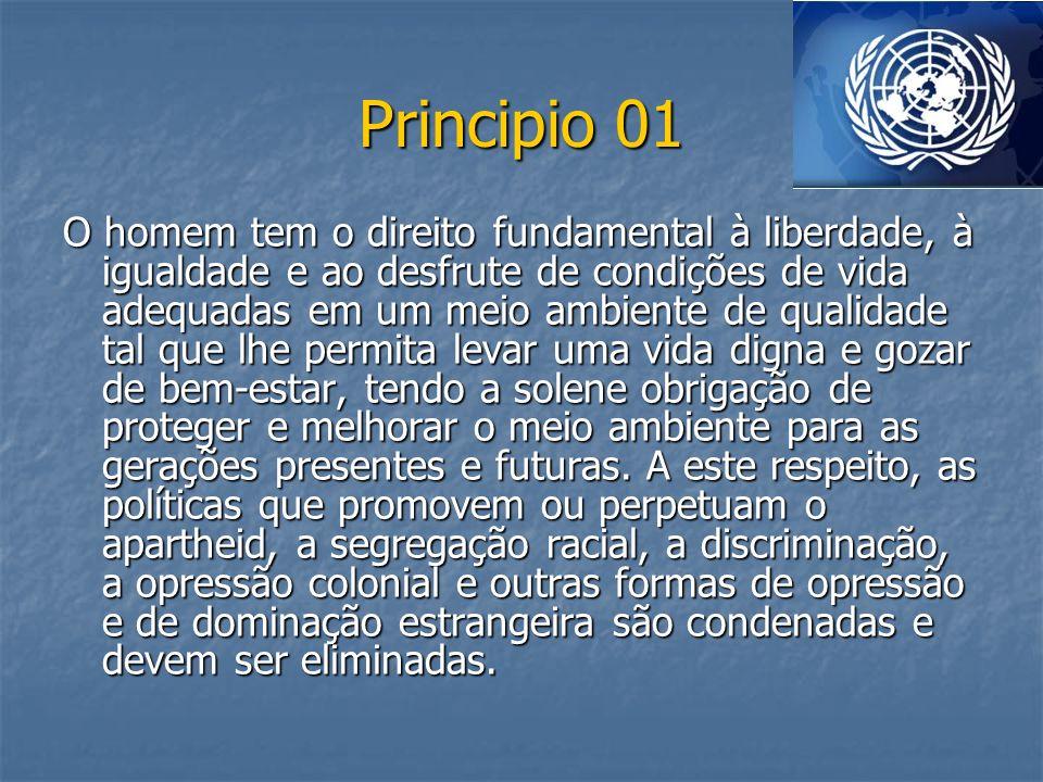 Principio 01 O homem tem o direito fundamental à liberdade, à igualdade e ao desfrute de condições de vida adequadas em um meio ambiente de qualidade