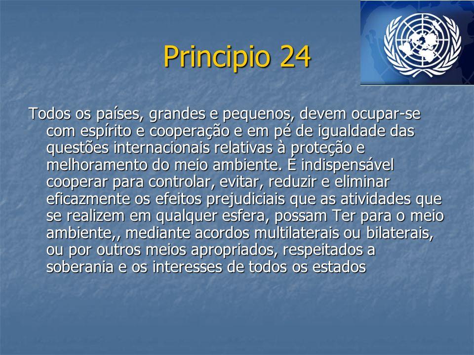 Principio 24 Todos os países, grandes e pequenos, devem ocupar-se com espírito e cooperação e em pé de igualdade das questões internacionais relativas