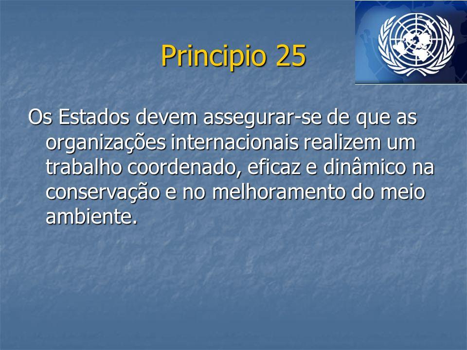 Principio 25 Os Estados devem assegurar-se de que as organizações internacionais realizem um trabalho coordenado, eficaz e dinâmico na conservação e n