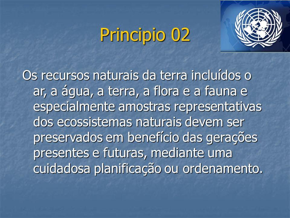 Principio 02 Os recursos naturais da terra incluídos o ar, a água, a terra, a flora e a fauna e especialmente amostras representativas dos ecossistema