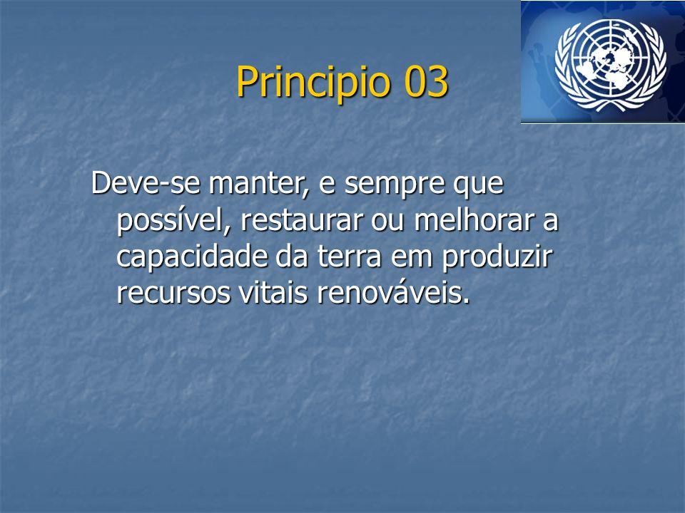 Principio 24 Todos os países, grandes e pequenos, devem ocupar-se com espírito e cooperação e em pé de igualdade das questões internacionais relativas à proteção e melhoramento do meio ambiente.