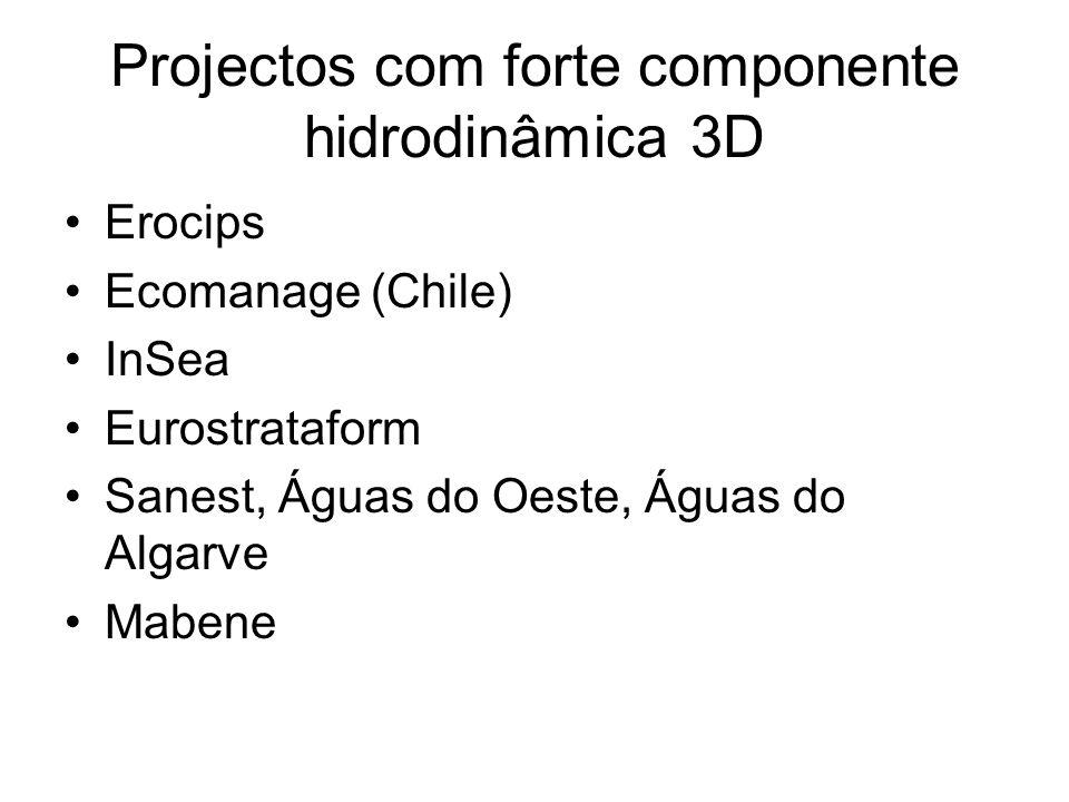 Projectos com forte componente hidrodinâmica 3D Erocips Ecomanage (Chile) InSea Eurostrataform Sanest, Águas do Oeste, Águas do Algarve Mabene