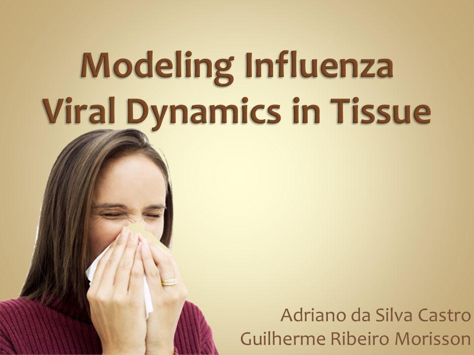 Introdução Modelagem O Modelo da influenza Dinâmicas dos Vírus Taxa de Expansão do Vírus Preparando o Modelo Resultados Preliminares Extensões Propostas Plataforma de Simulação Conclusão Referências