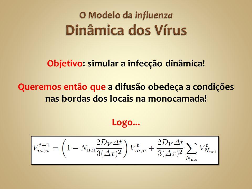 Objetivo: simular a infecção dinâmica! Queremos então que a difusão obedeça a condições nas bordas dos locais na monocamada! Logo...