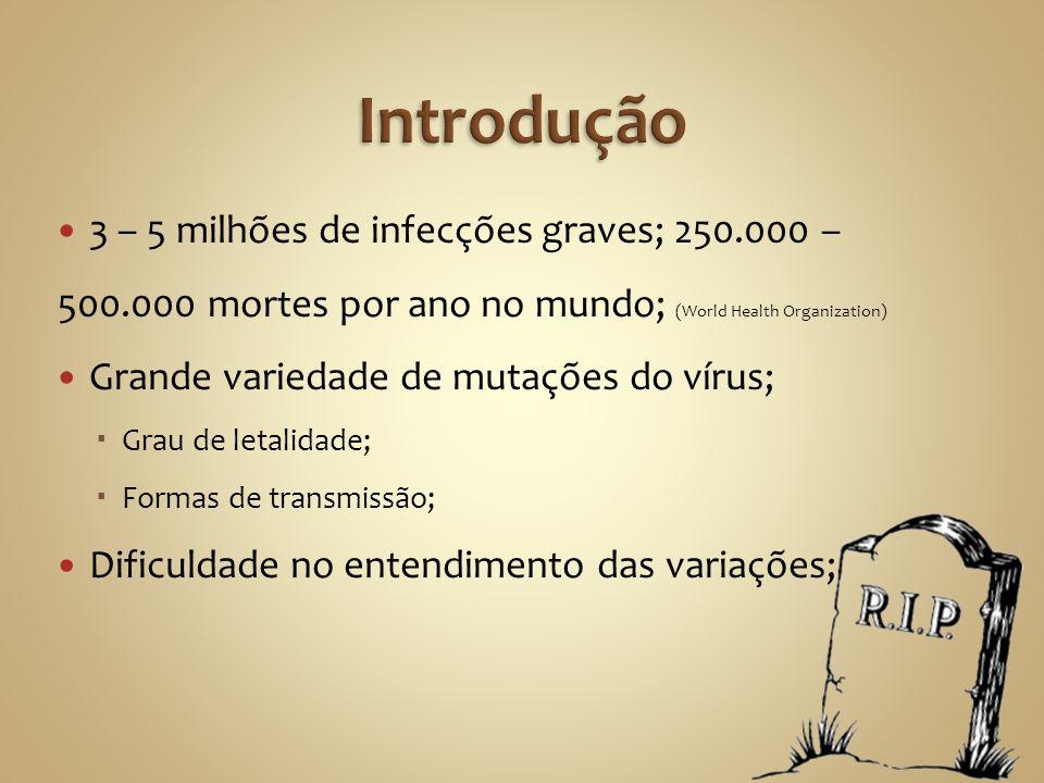 3 – 5 milhões de infecções graves; 250.000 – 500.000 mortes por ano no mundo; (World Health Organization) Grande variedade de mutações do vírus; Grau