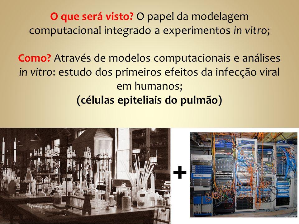 O que será visto? O papel da modelagem computacional integrado a experimentos in vitro; Como? Através de modelos computacionais e análises in vitro: e