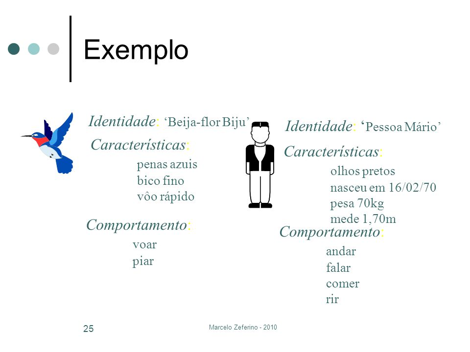 Marcelo Zeferino - 2010 25 Exemplo Identidade: Beija-flor Biju Características: penas azuis bico fino vôo rápido Comportamento: voar piar Identidade: