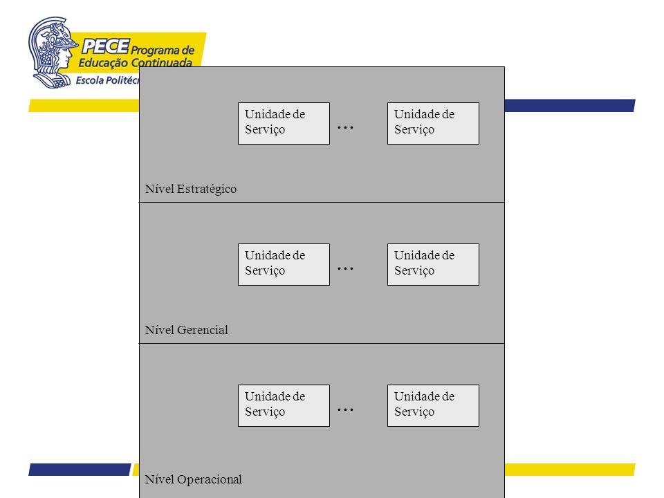 Nível Estratégico Nível Gerencial Nível Operacional Unidade de Serviço...