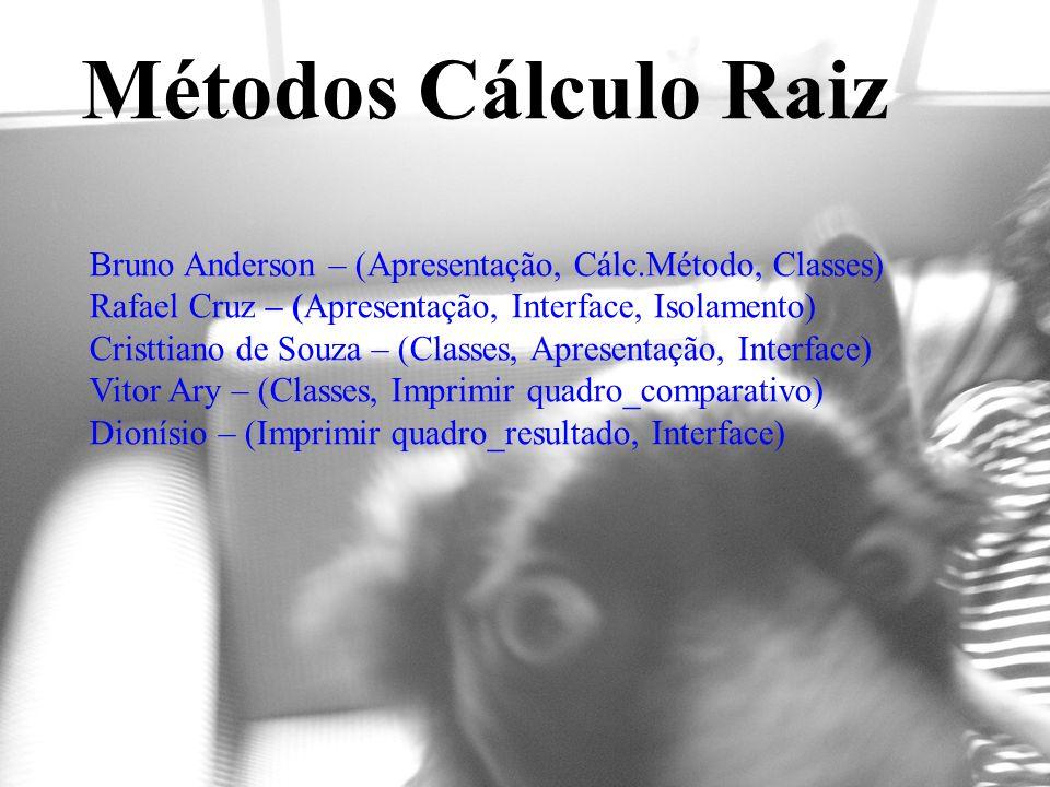 Bruno Anderson – (Apresentação, Cálc.Método, Classes) Rafael Cruz – (Apresentação, Interface, Isolamento) Cristtiano de Souza – (Classes, Apresentação