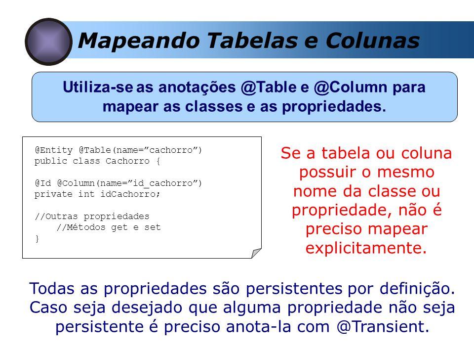 Mapeando Tabelas e Colunas Utiliza-se as anotações @Table e @Column para mapear as classes e as propriedades. @Entity @Table(name=cachorro) public cla