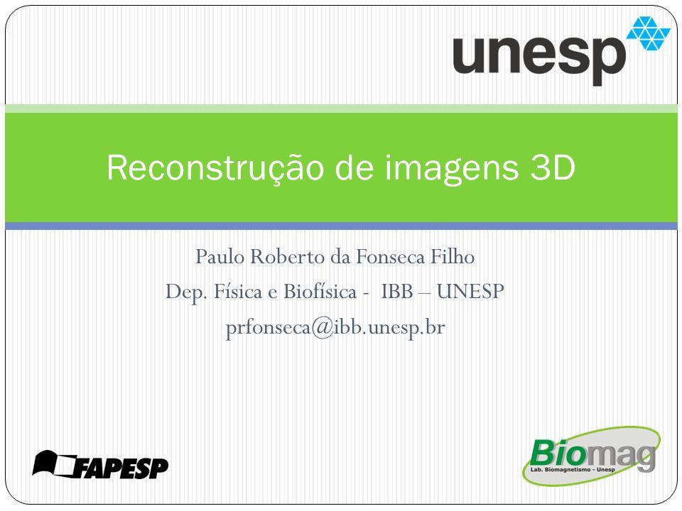 Paulo Roberto da Fonseca Filho Dep. Física e Biofísica - IBB – UNESP prfonseca@ibb.unesp.br Reconstrução de imagens 3D