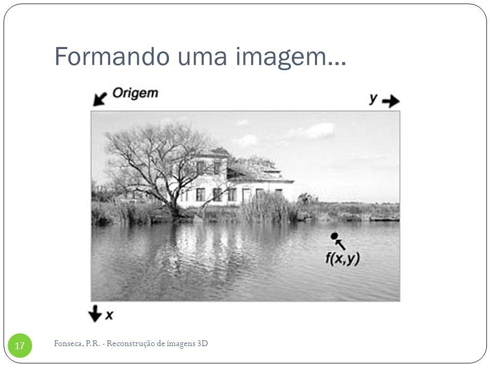 Formando uma imagem... Fonseca, P.R. - Reconstrução de imagens 3D 17